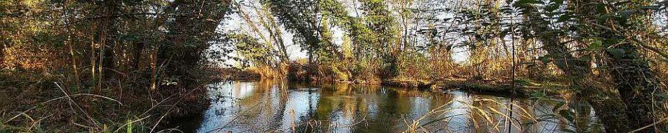 Porpetto, fiume Corno.